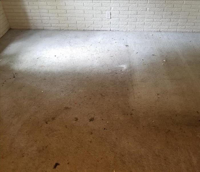Carpet stains from previous occupants of this northwest Iowa property which included caked in dirt, pet stains, and even oil.