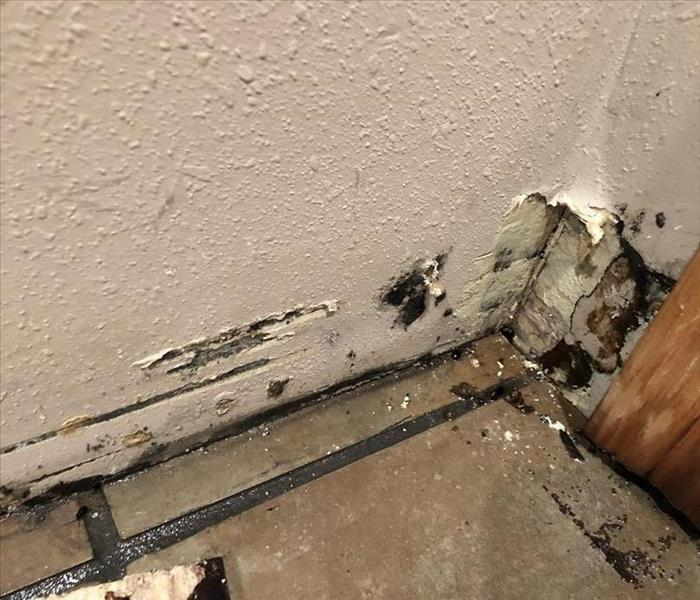 A photo of mold growth hidden behind base trim in this northwest Iowa home.