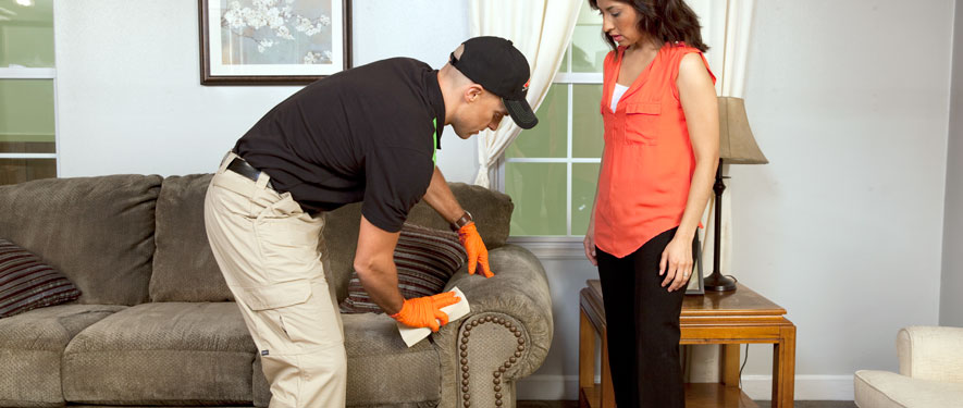Spencer, IA carpet upholstery cleaning